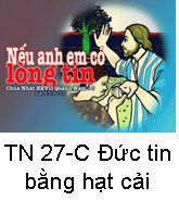 Suy Niệm Tin Mừng Chúa Nhật 27 TN-C Bài 101-121 Nếu có đức tin bằng hạt cải